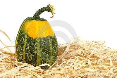 Yellow and green pumpkin