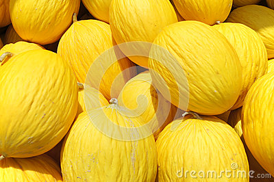 Yellow Honey dew melon