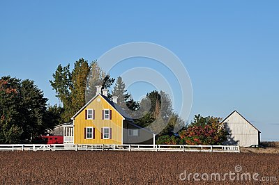 Yellow house in farm  and soy beans field