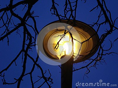 Yellow lamp on nights sky
