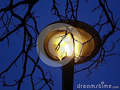 Yellow lamp on night's sky