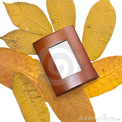 Yellow leaves and brown frame