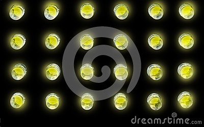 Yellow Light Bulbs on Black