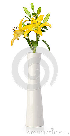 Yellow lily in white vase