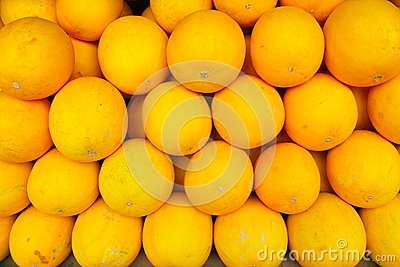 Yellow muskmelon