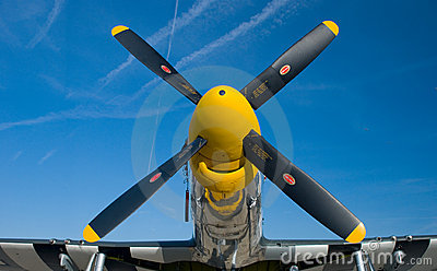 Yellow nose of a P-51 Mustang