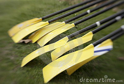 Yellow Oars Before Race