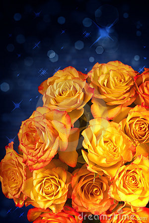 Yellow and orange roses over blue background