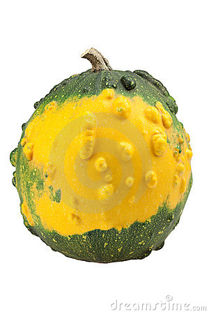Yellow ornamental pumpkin