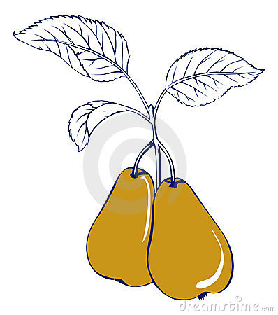 Yellow pear with leaf