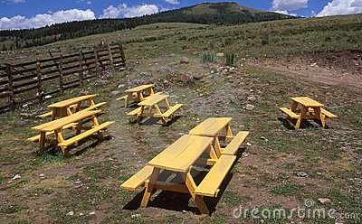 Yellow Picnic Tables