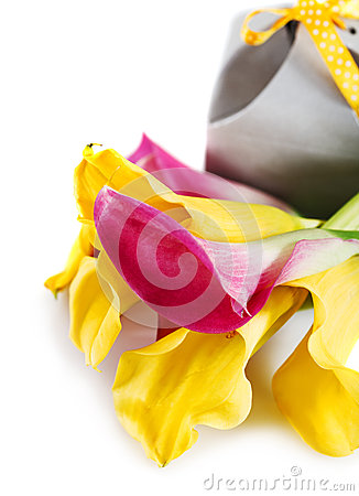 Yellow and pink cala lilies with present