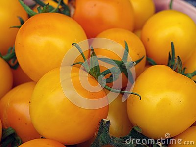 Yellow plum tomatoes 3