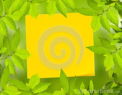 Yellow post it not with Green leave