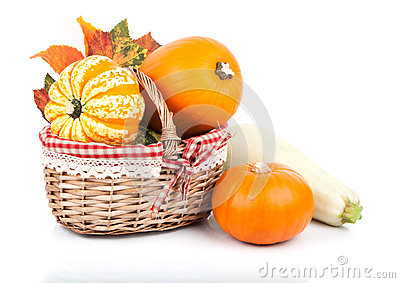 Yellow pumpkins Stock Photo