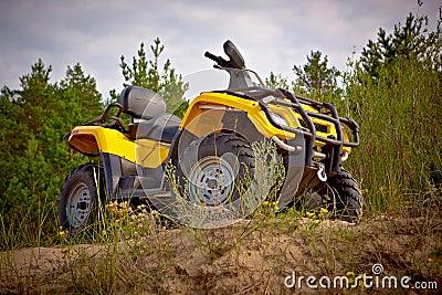 Yellow quad