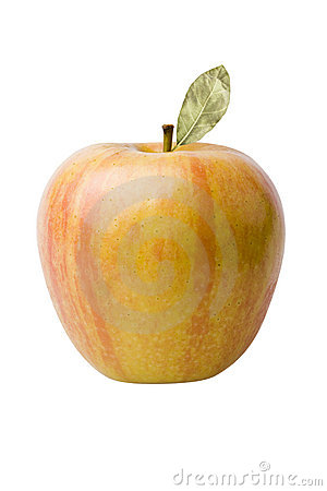 Free Yellow Red Apple Stock Images - 6017114