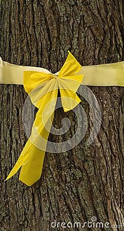 Yellow ribbon tied around tree