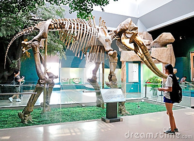 Yellow River Elephant Fossil Editorial Stock Photo