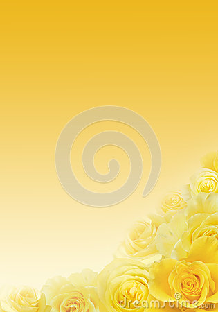 Free Yellow Roses Background Stock Images - 29525104