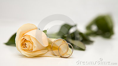 Yellow roses and weddings rings
