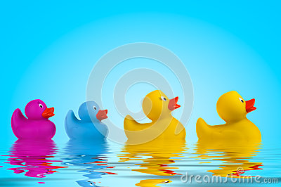 Yellow rubber ducks in water.