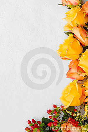 Yellow and salmon roses