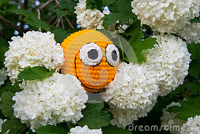 Yellow smiley among flowers