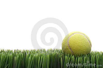 A yellow tennis ball on grass