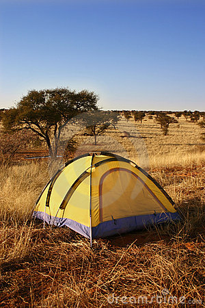 Yellow tent in the wilderness.