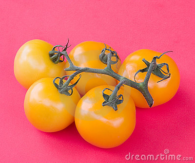 Yellow Tomatoes Stock Photo - Image: 1090620