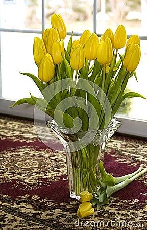 Free Yellow Tulips Royalty Free Stock Image - 13309066