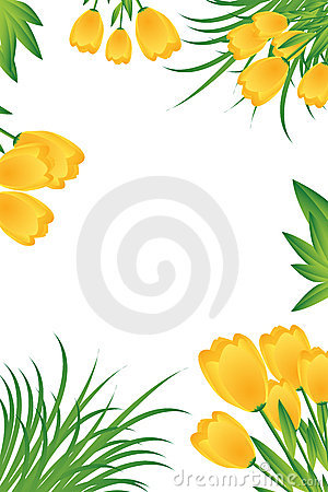 Yellow tulips card