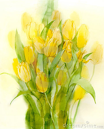 Yellow tulips. Still Life. Watercolor on paper