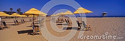 Yellow umbrellas and beach chairs