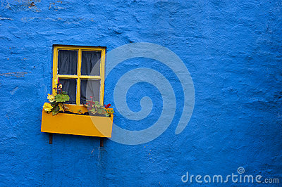 Yellow window flower box on blue wall