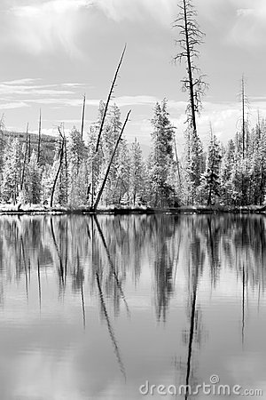 Free Yellowstone Reflections In IR Royalty Free Stock Image - 2779376
