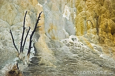 Yellowstone terraces