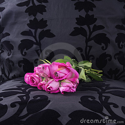 Yesterday s pink roses left at a black velvet seat