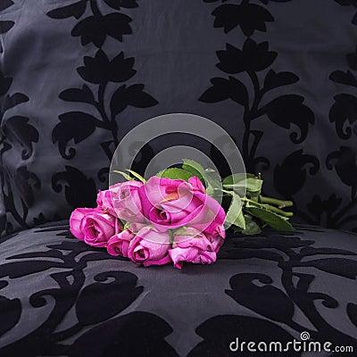 Yesterday s pink roses left at a black velvet seat