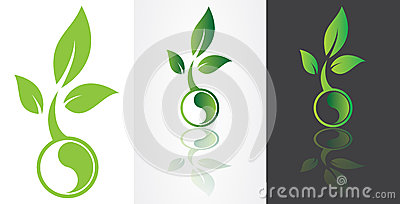 Ying yang symbolism with green leaf