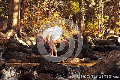Yoga Crane