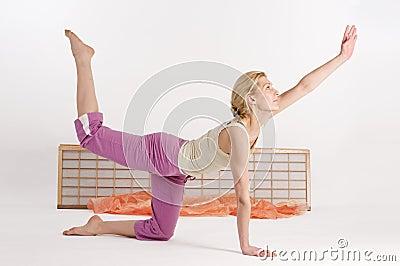 Yoga diagonally cat