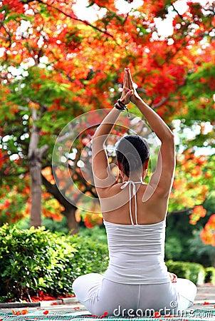 Free Yoga Meditation Stock Photo - 24835260