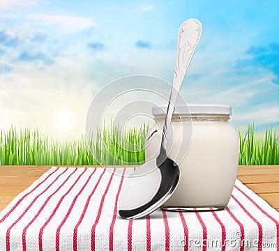 Free Yogurt Stock Photography - 118958422