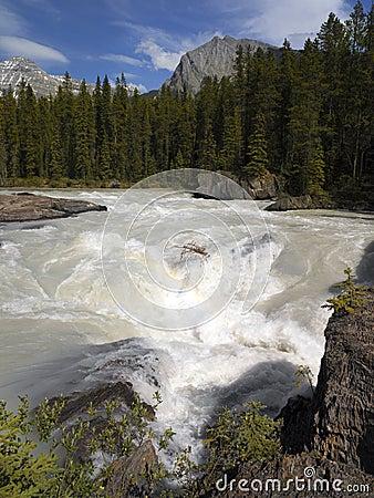 Yoho N.P. - Kicking Horse River - Canada