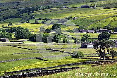 Yorkshire Dales - Farmland - England