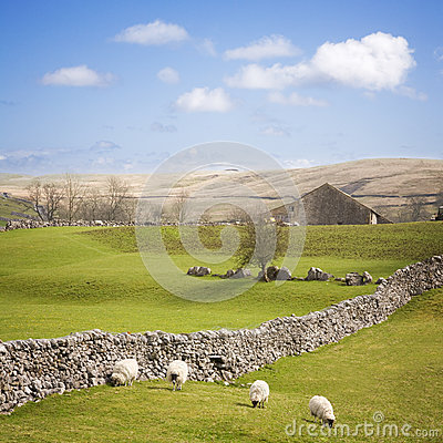 Free Yorkshire Dales With Dry Stone Wall Stock Images - 25866054