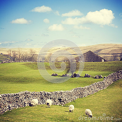 Free Yorkshire Dales With Dry Stone Wall Royalty Free Stock Photo - 37216365