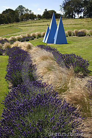 Yorkshire Lavender - United Kingdom